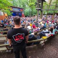 Festival v lesích
